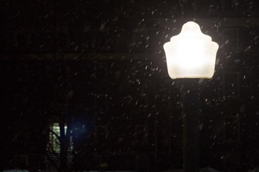 Shedding light on winter depression
