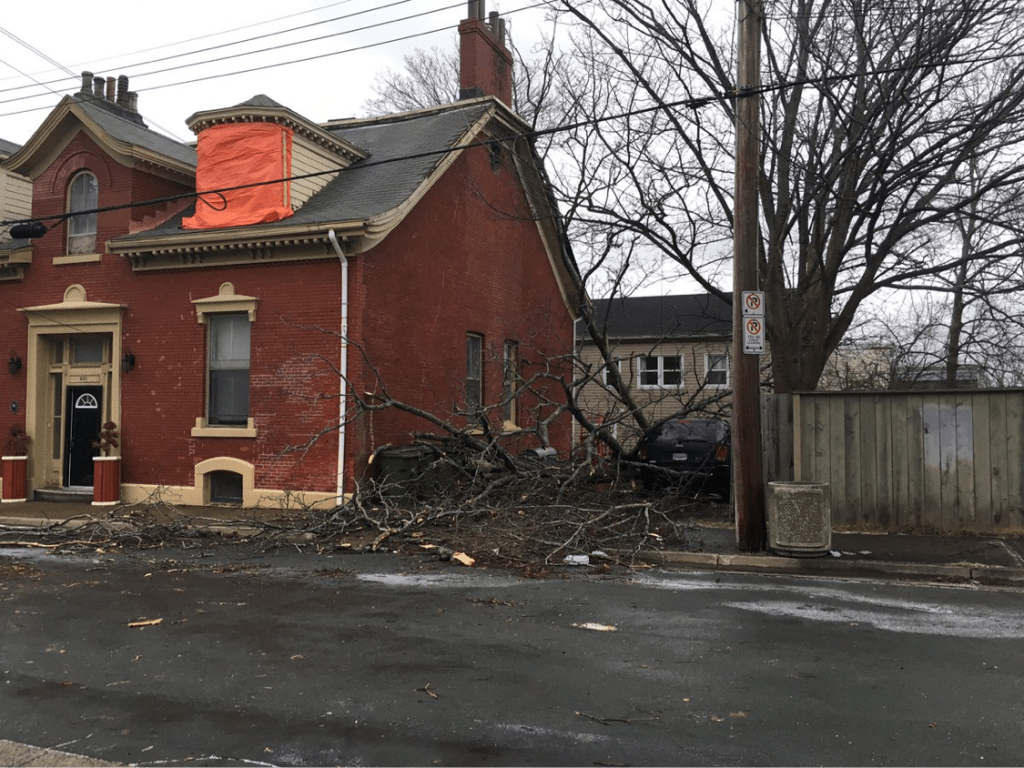 Bomb cyclone storm damage in Halifax's South End (courtesy Jennifer Grudic/Global News)